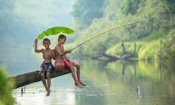 Nằm mơ thấy câu cá đánh con gì may mắn nhất? là điềm Lành hay Xấu?